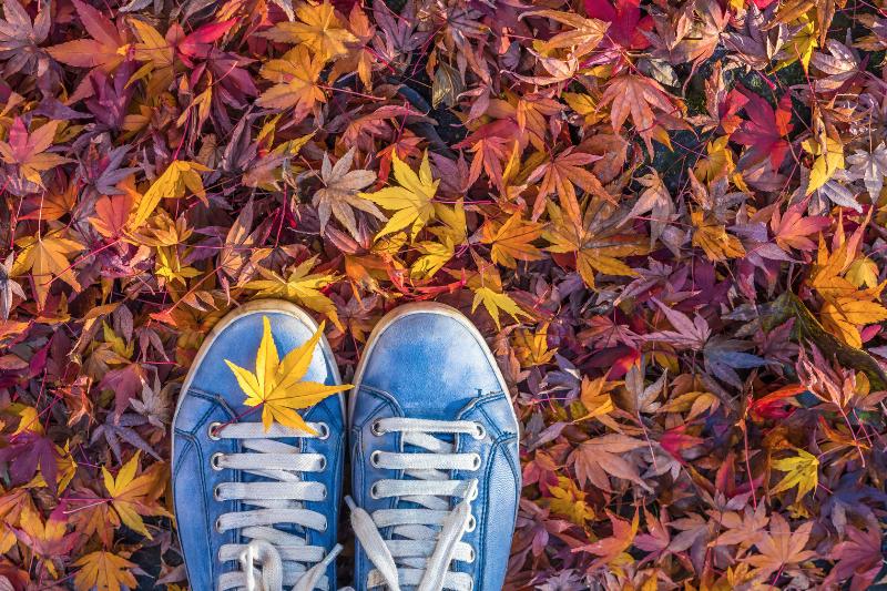 Mantenersi-in-salute-seguendo-i-ritmi-delle-stagioni:-L'-autunno