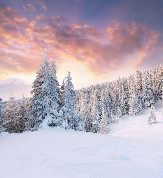 Vivere-in-salute-secondo-i-ritmi-delle-stagioni:-L'Inverno